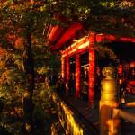 Dusk-at-Kiyomizu-Temple,-Kyoto2