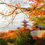 Dusk-at-Kiyomizu-Temple,-Kyoto4