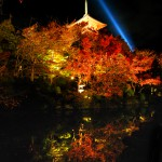 Light-up-of-fall-colors-at-Kiyomizu-Temple-Kyoto