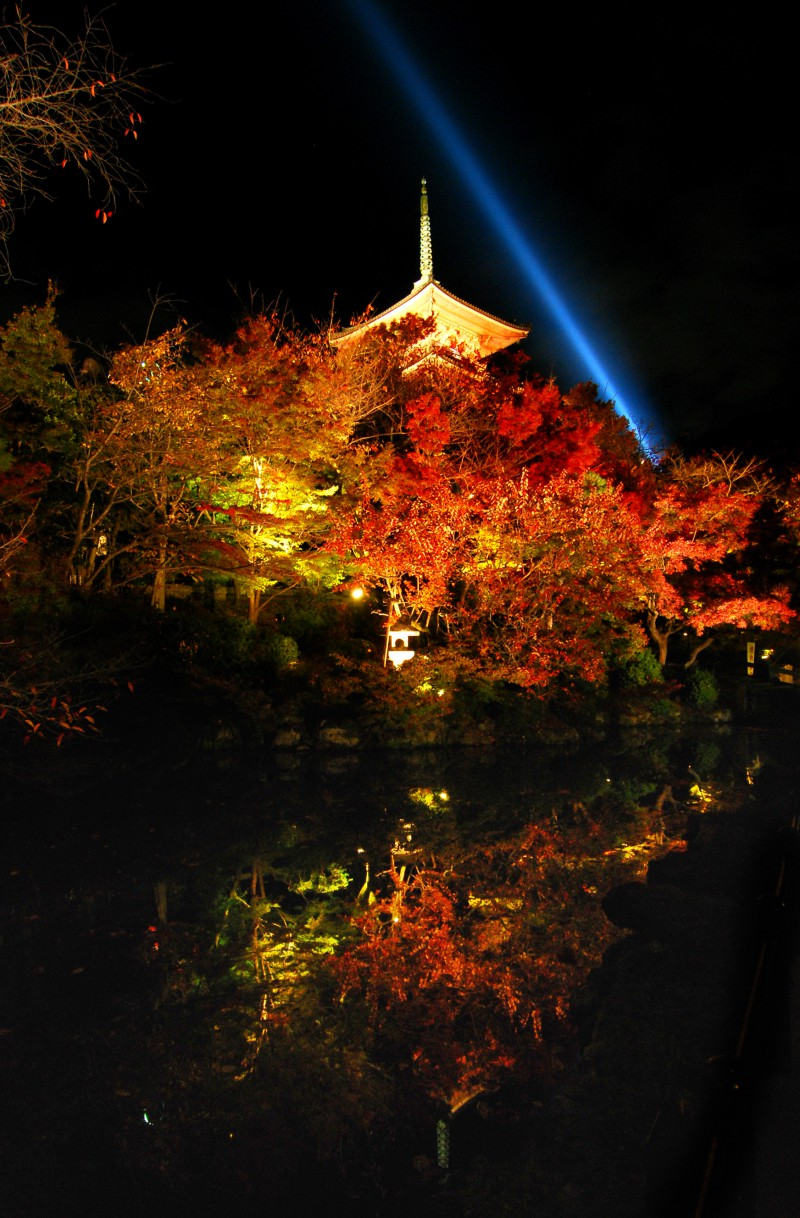 Light up of fall colors at Kiyomizu Temple, Kyoto