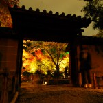 Light-up-of-fall-colors-at-Kodaiji-Temple-Kyoto4