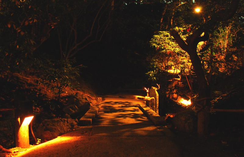 Lighting installations at Shorenin Temple, Kyoto