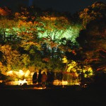 Lighting-installations-at-Shorenin-Temple-Kyoto3
