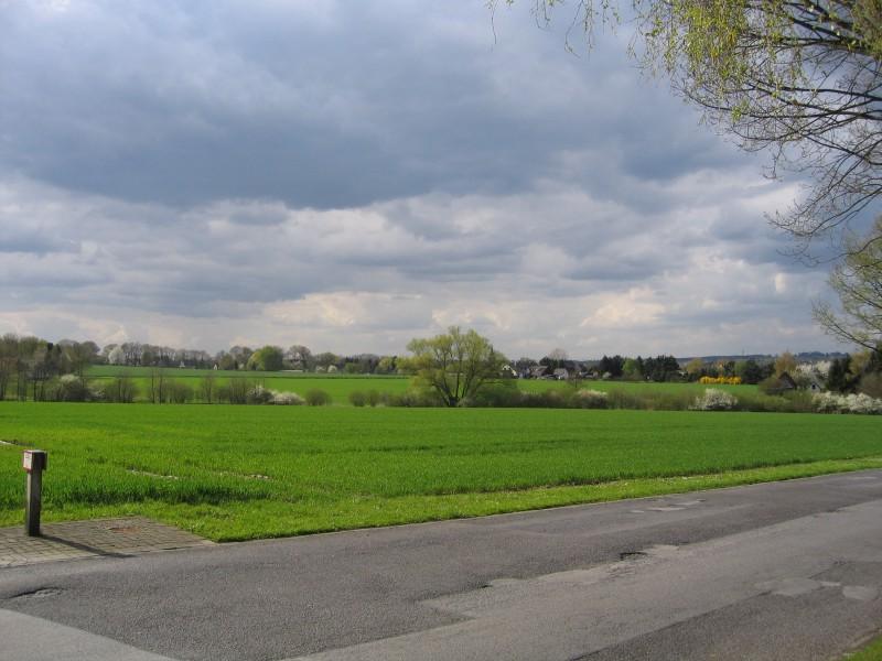 Landscape of Menden