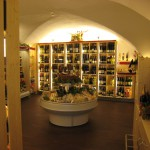 Store-in-Wien4