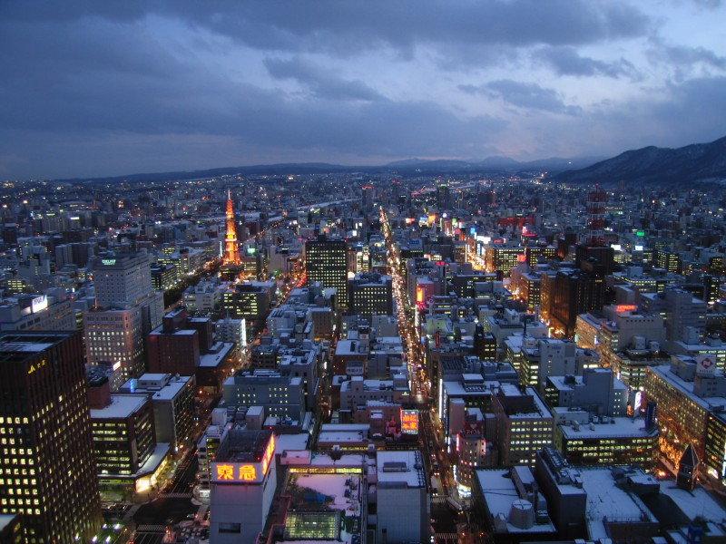View of Sapporo from the JR Tower
