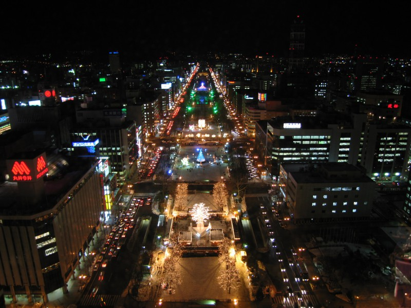 View of Sapporo from the TV Tower