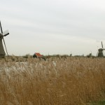 Windmills-of-Kinderdijk