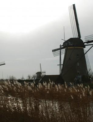 Windmills-of-Kinderdijk3