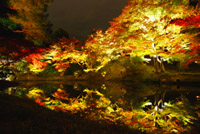 global-research_kyoto_04