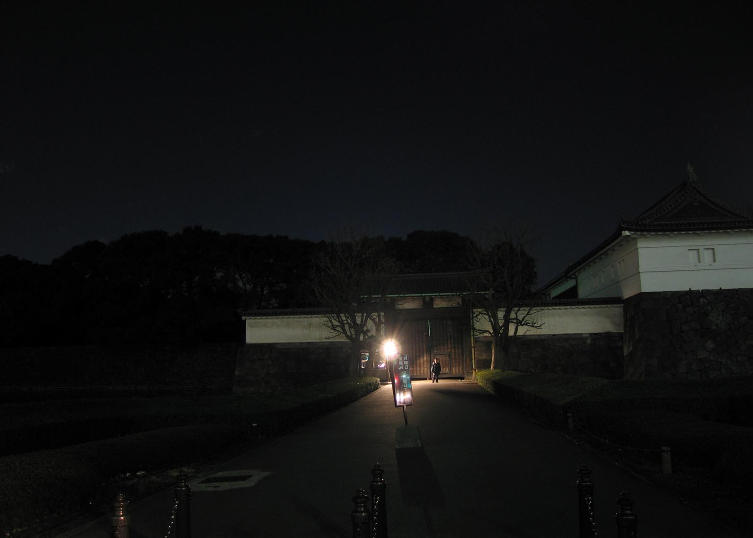 Imperial Palace: The Last Refuge of Darkness in Tokyo