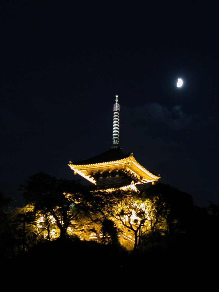 Moon Watching at Sankeien Garden, Yokohama