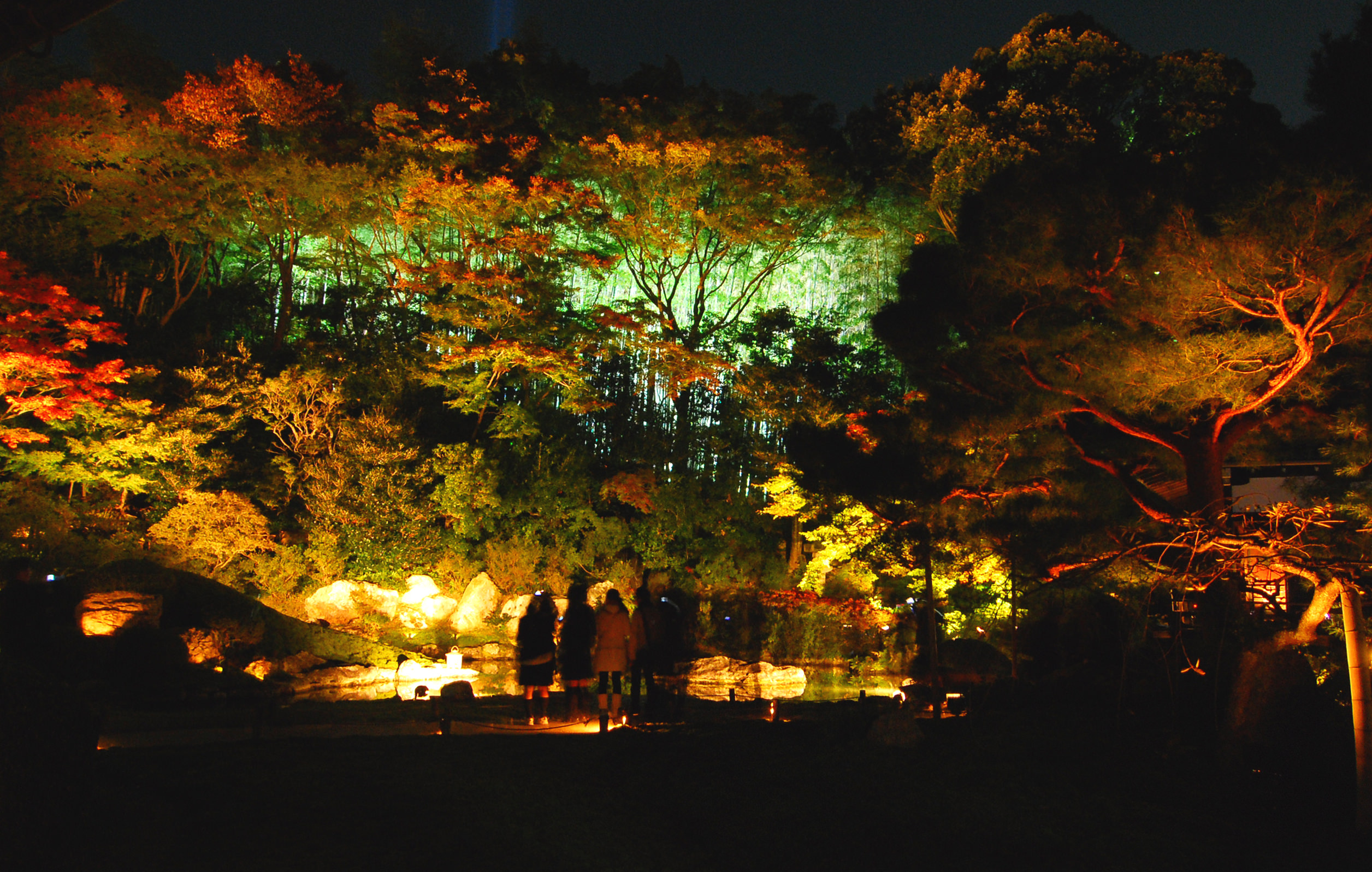 00_赤い紅葉の奥、青白く照らされた竹林が神秘的な印象を与える