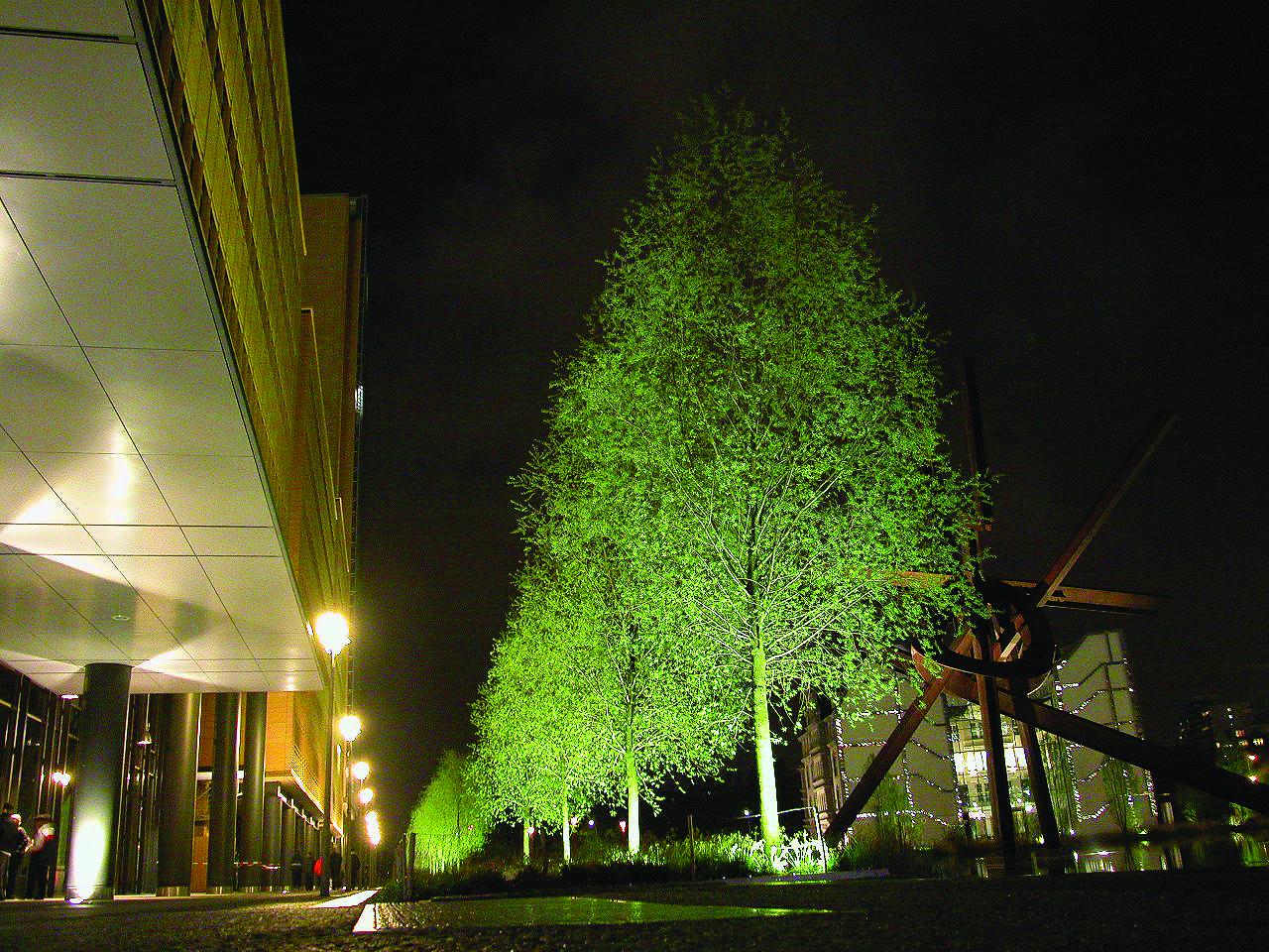 10.ライトアップされた新緑の樹木(ベルリン)