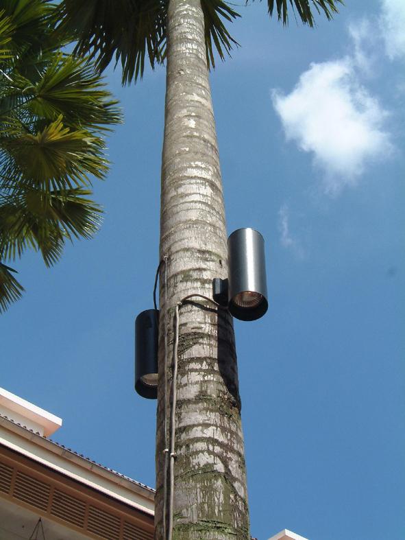 8.ヤシの木に取り付けられたアッパー&ダウンの照明器具
