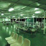 桜島への連絡船