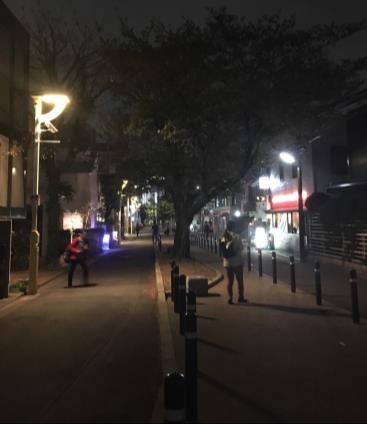 (写真5)グリーン・ストリートのアンバランスな街灯