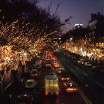 Tokyo_Omotesando_Christmas Illumination
