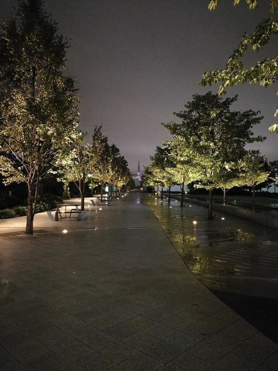 ⑦25lx_シーズンテラス裏 東京タワーまで一直線 抜け感のある道 木々のライトアップも綺麗_英雄